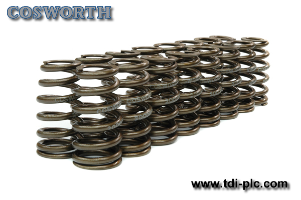 Cosworth High RPM Valve Spring Set - SR20DET
